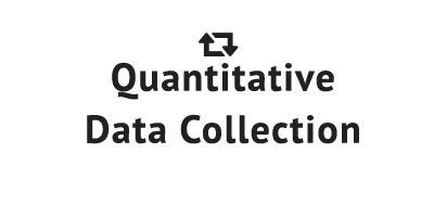 Quantitative Data Collection - Data Collection Services